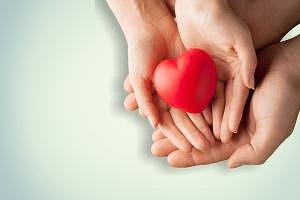 people holding a heart in the hands
